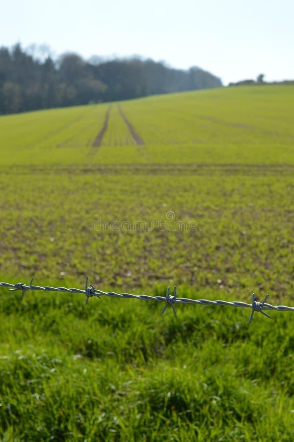 Stacheldrahtzaun entlang Erntefeld lizenzfreies stockfoto