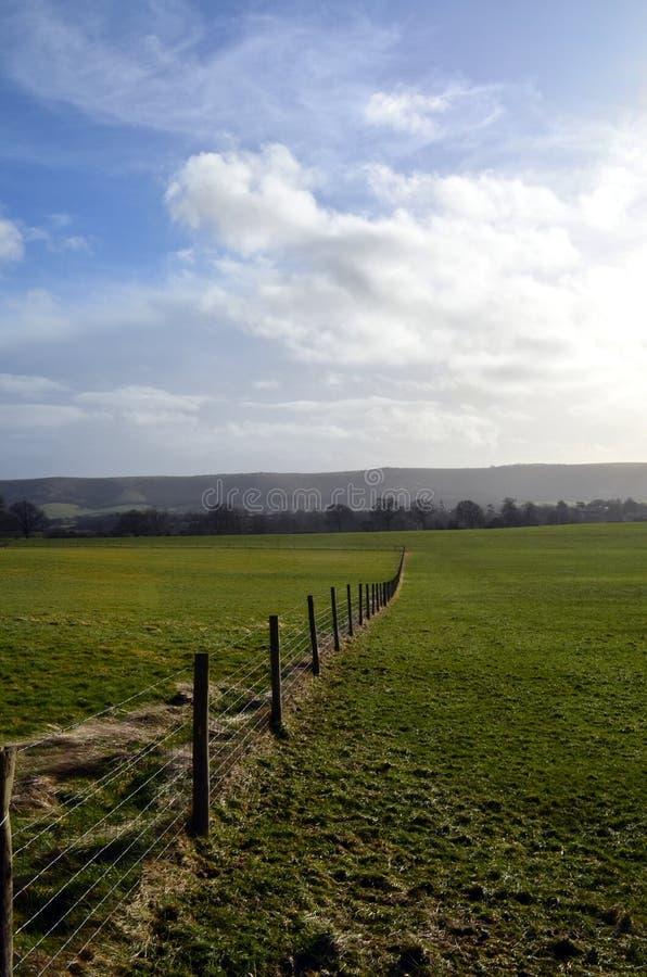 Stacheldrahtzaun entlang Wiesenfeldern stockbild