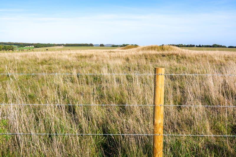Stacheldrahtzaun zum ländlichen Grasland lizenzfreie stockfotos