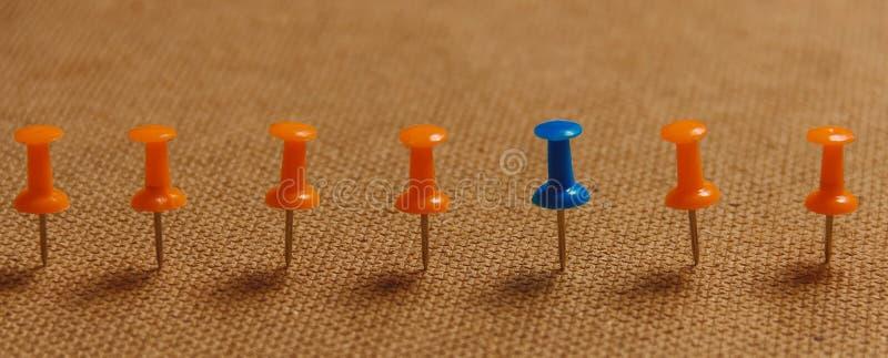 Stacjonarny, Błękitny Pushpin w rzędzie z pomarańcze, pojęcie dla różnicy, indywidualność, przywódctwo kosmos kopii sztandar obrazy stock