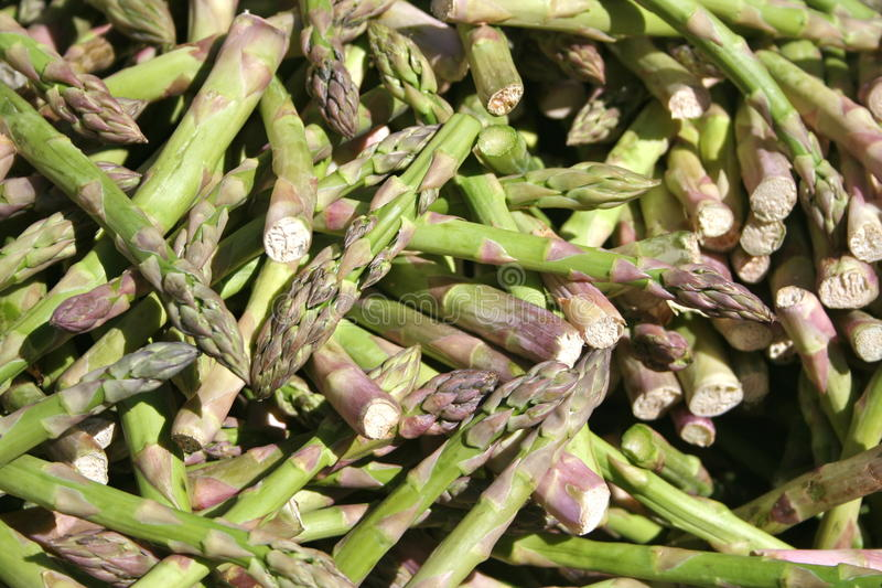 Stack of asparagus stock image