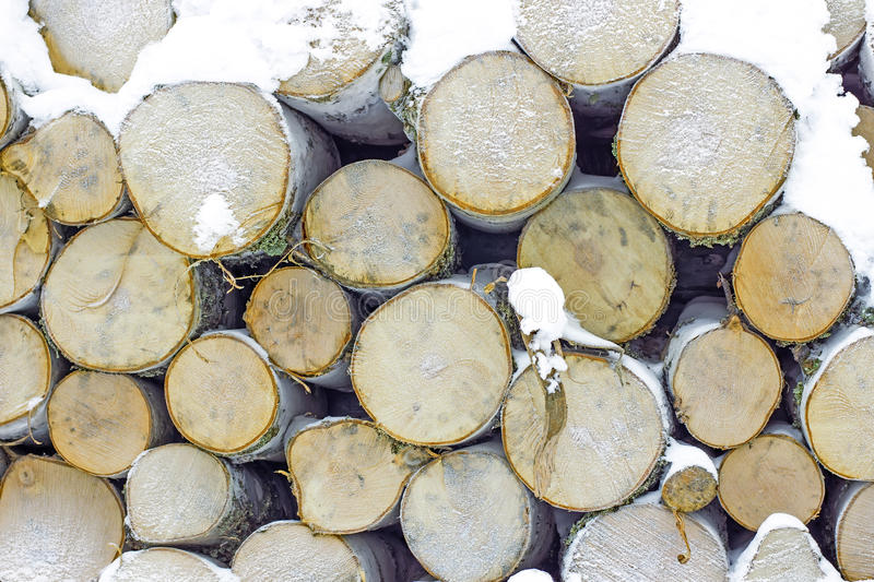 Download Stack of birch wood stock photo. Image of natural, country - 33946290