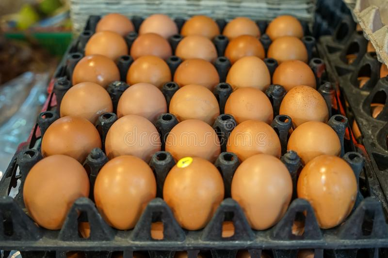 Stack of black trays full of natural chicken eggs rows pattern selling in local market, selective focus royalty free stock photography