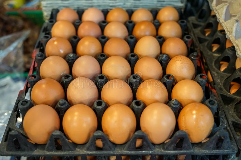 Stack of black trays full of natural light brown chicken eggs selling in local food market, selective focus royalty free stock photography