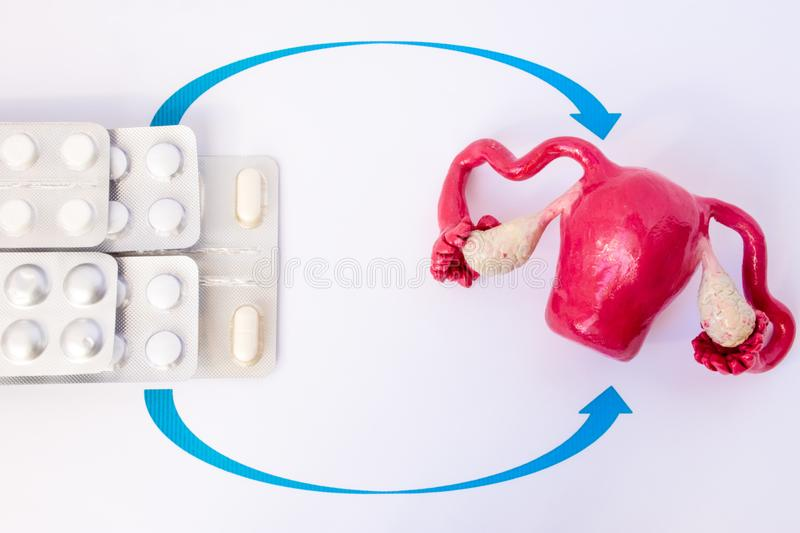 Stack blisters with pills and capsules inside pointed arrows on model of uterus with ovaries. Concept photo of hormone replacement stock photo