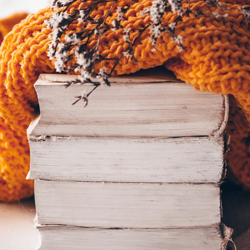 Stack of books and cozy knitted sweaters on warm background and with viburnum and herbarium. Autumn-winter concept stock photos