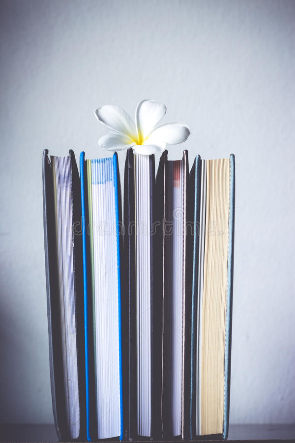 Stack of books and frangipani flower royalty free stock photos