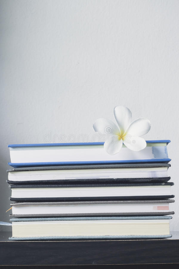 Stack of books and frangipani flower royalty free stock images