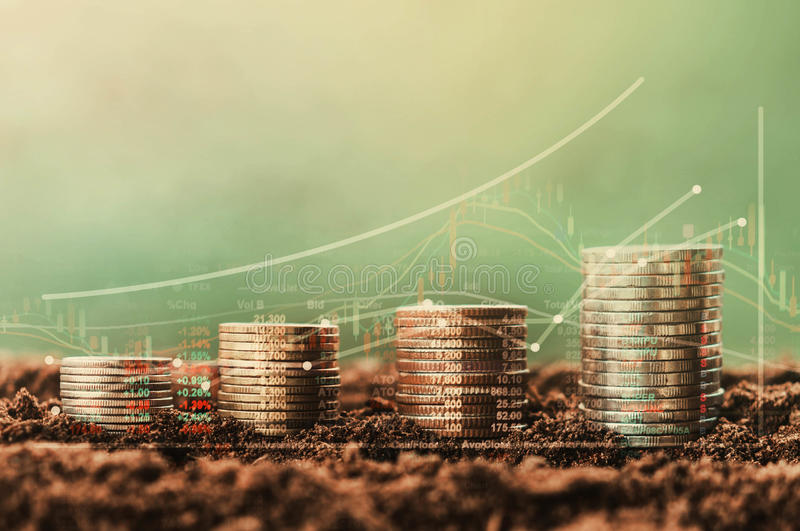 Stack of coin growth money and tree, concept Data chart of fina. Nce indices on nature background royalty free stock images