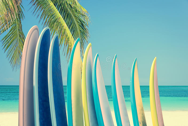 Stack of colorful surfboards on a tropical beach by the ocean with palm tree, retro vintage filter. Effect royalty free stock image