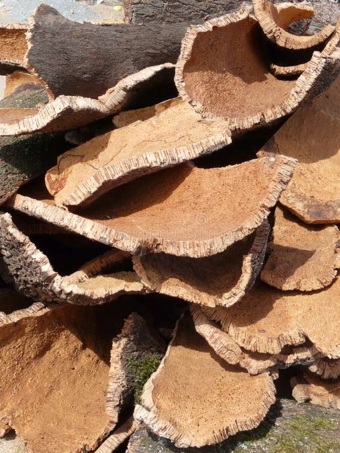 Stack of cork. Stack of oak's bark used to produce corks for wine bottles royalty free stock image