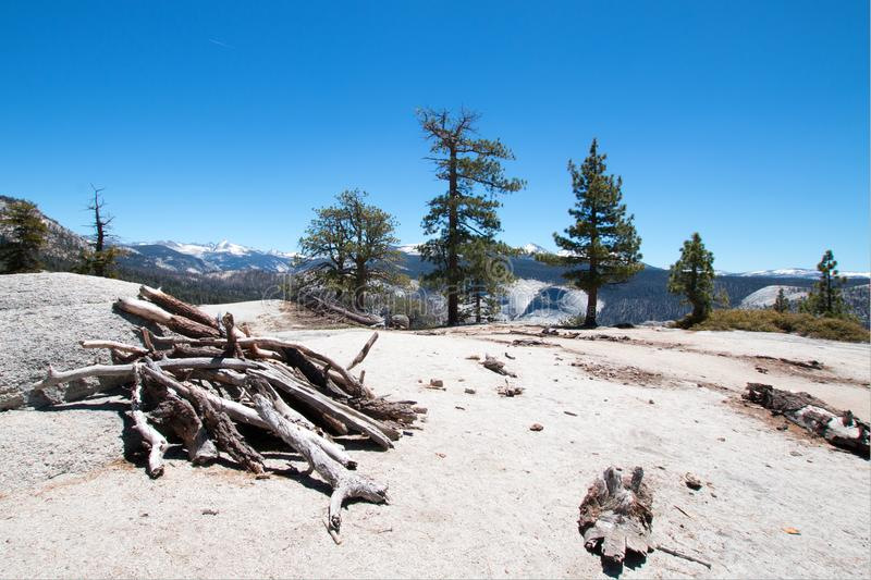 Stack of dead wood at the base of Sub Dome next to Half Dome in Yosemite National Park in California stock photo