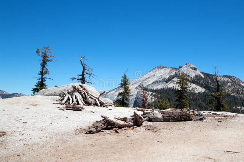 Stack of dried out dead wood at the base of Sub Dome next to Half Dome in Yosemite National Park in California stock photo