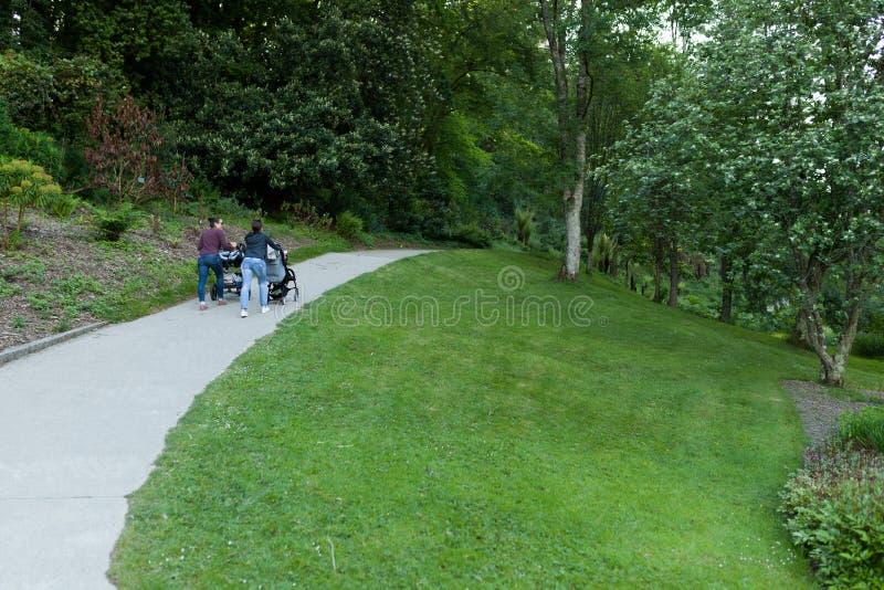 Stack driftig barnvagn för två moder på vandringsledet i parkerabotaniska trädgården Le Vallon du Alar Brest France 27 kan 2018 arkivbilder