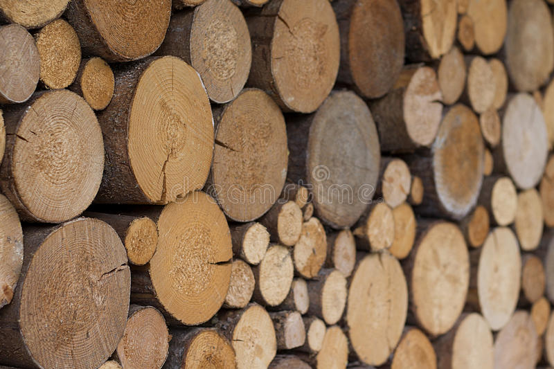 Stack of firewood. Organized stack of freshly cut pine firewood royalty free stock image