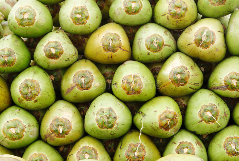 Download Stack Of Fresh Green Coconuts Stock Photo - Image: 30746400