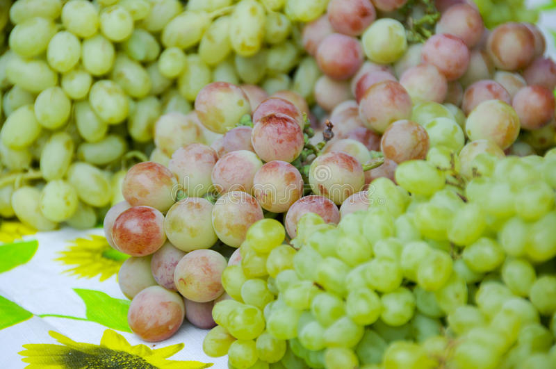Download Stack Of Grape In The Xinjiang Market Stock Image - Image: 26193479