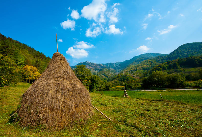 Download Stack hay stock photo. Image of bale, field, haystack - 23349750