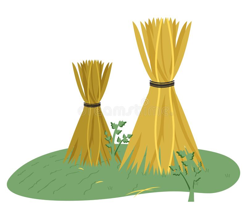 Haystack on Grass, Wheat Harvest, Farmland Vector. Stack of hay on grass, dried yellow plant standing outdoor, wheat harvest, nobody farmland, agriculture or stock illustration