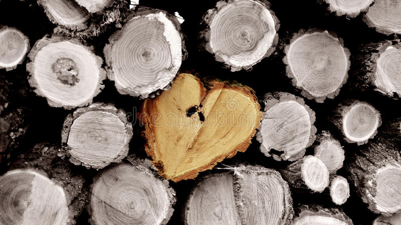 Stack of log wood with heart shape. In the middle royalty free stock image
