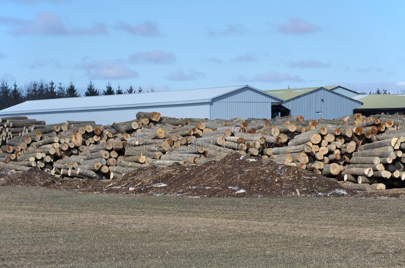 Stack of logs by sawmill stock photography