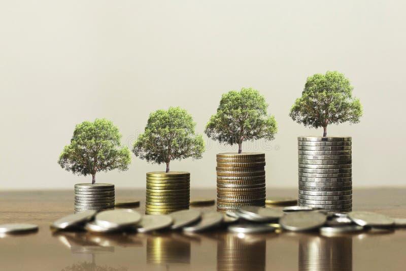 Stack-Münzen mit Pflanzen wachsen in Stufen. Unternehmenswachstumskonzept stockbilder