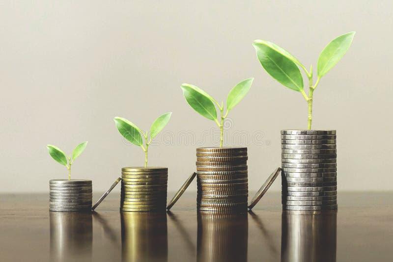 Stack-Münzen mit Pflanzen wachsen in Stufen. Unternehmenswachstumskonzept lizenzfreies stockbild