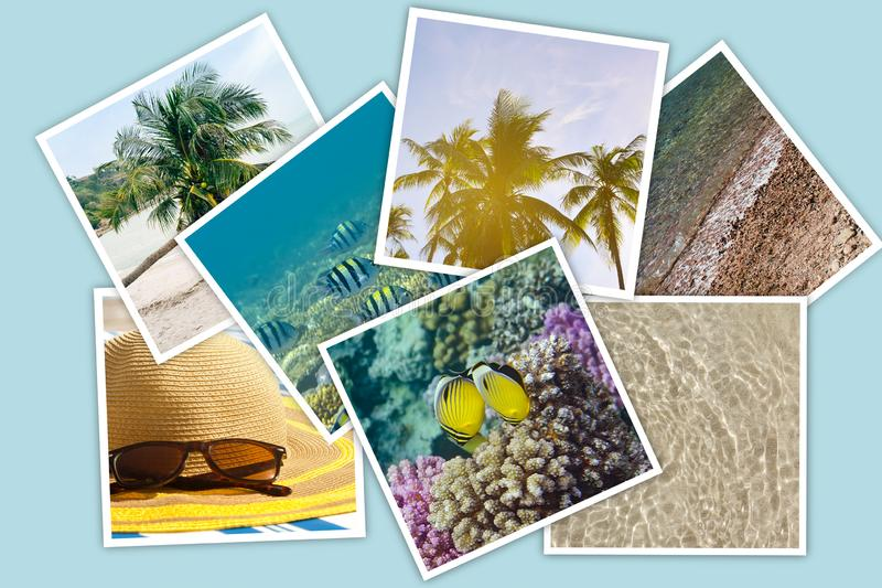 Stack of photos showing Vacation, tropics, sea, summer, underwater world stock photos