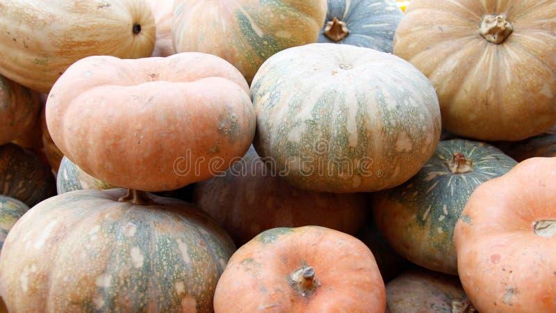 Stack Of Pumpkin stock photos