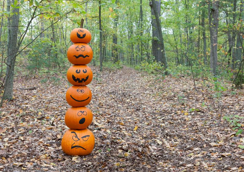 Stack of pumpkins in the woods royalty free stock images