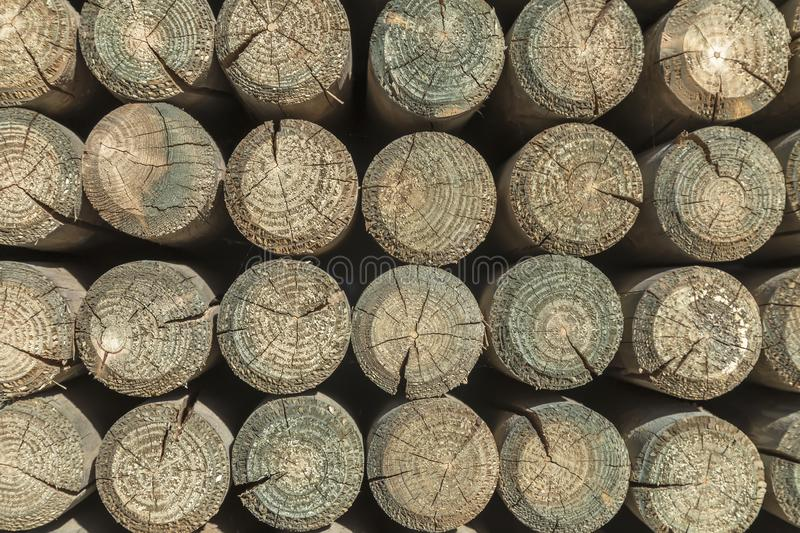 Round wooden pillars stock images