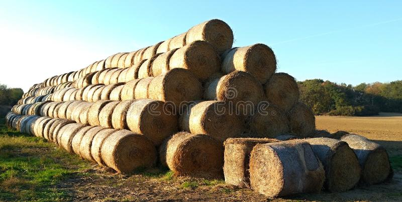 Stack of straw bales royalty free stock images
