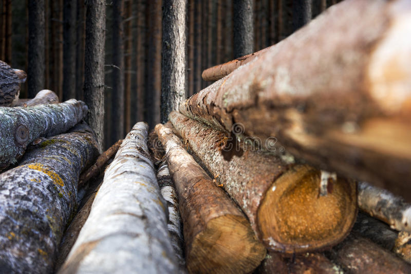 Stack of timber stock photography
