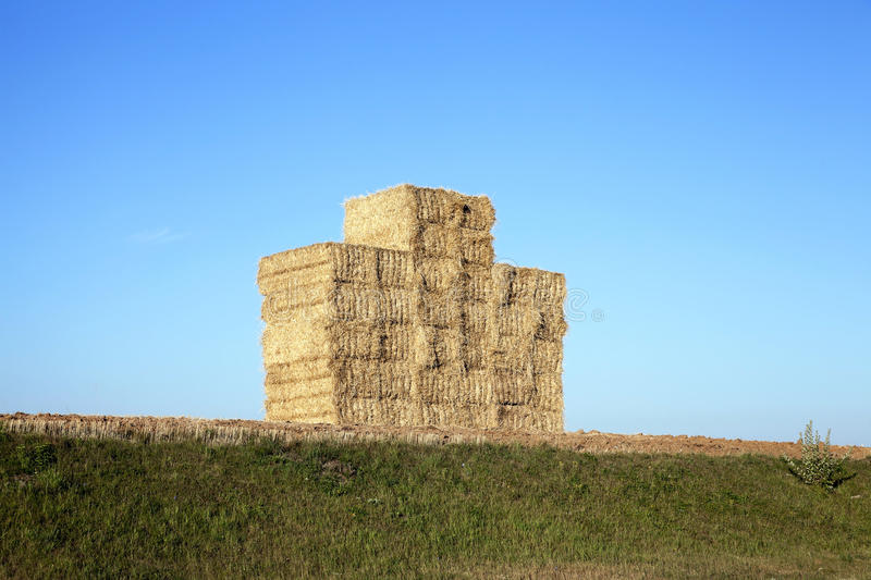 Stack of wheat straw royalty free stock photography