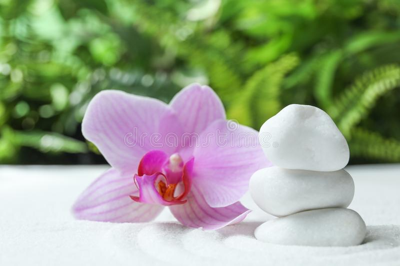 Stack of white stones and beautiful flower on sand against blurred green background. Zen, meditation, harmony stock photography