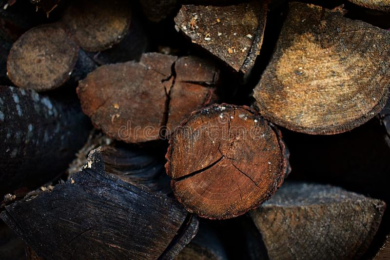 Stack of Wood Logs stock image