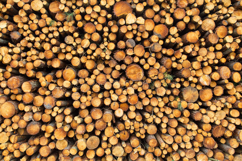 Stack of wood stock photos