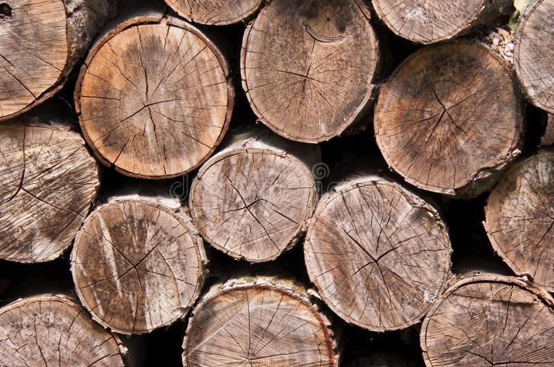 Stacked cut logs. A close up of a pile of cut stacked logs stock photography