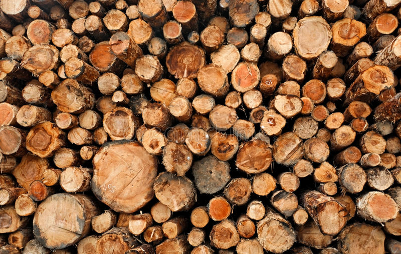Download Stacked Cut Raw Timber Wood Logs Stock Photo - Image: 20238944