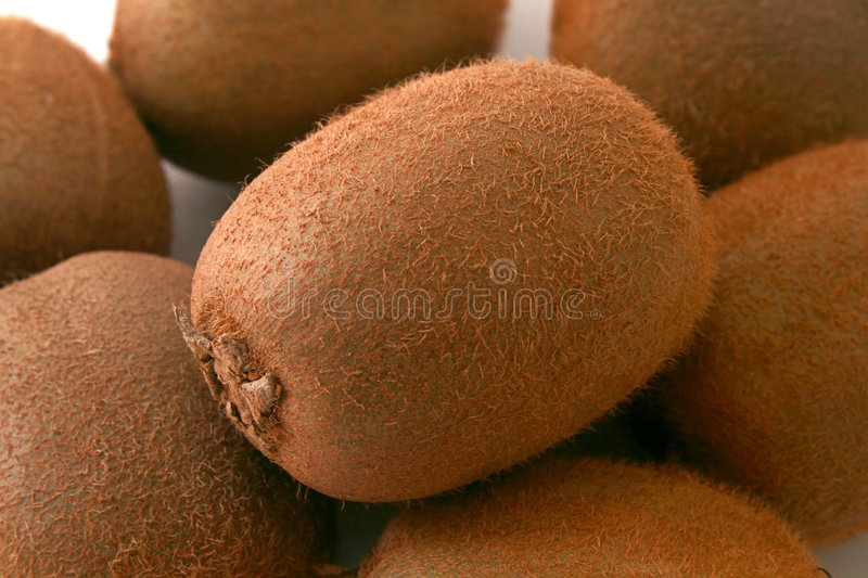 Download Stacked kiwi stock photo. Image of brown, white, tropical - 1881848