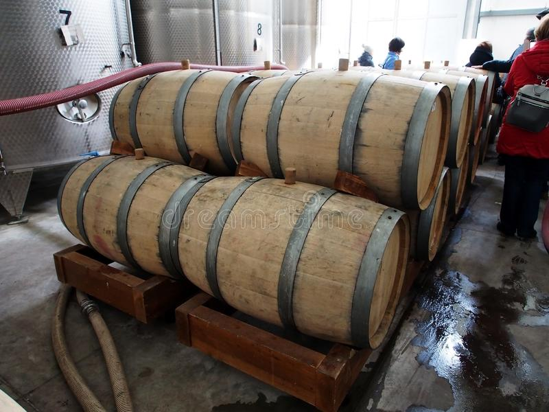 Stacked oak barrels for cognac. At a winery in Georgia stock photo