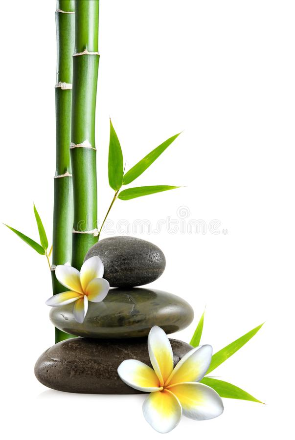 Stacked pebbles, frangipani flowers and bamboo stem and leaves stock image
