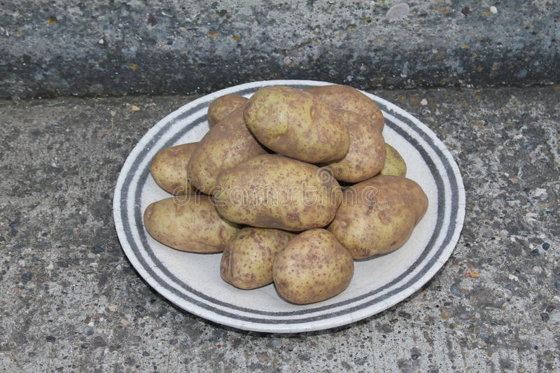 Stacked potatoes on a on a plate on concrete steps stock photo