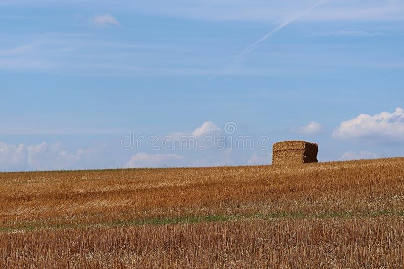 Stacked square hay bales on harvested field, blue skies with some clouds, summer season royalty free stock image