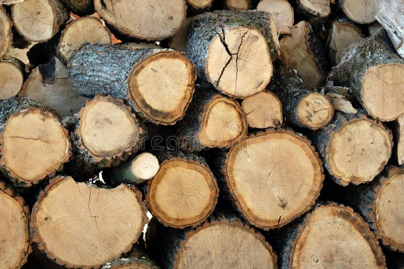 Stacked stacks of logs, close-ups. Preparation of firewood, sawing. Tree logs background royalty free stock image