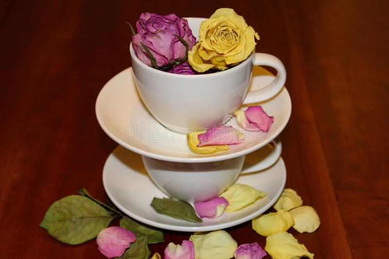 Stacked teacups with rose buds and rose petals royalty free stock image