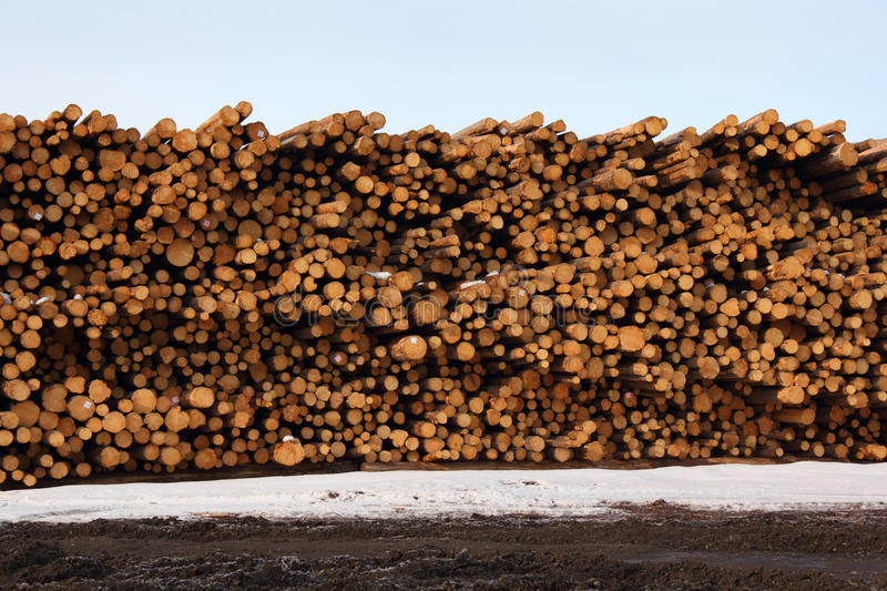 Stacked Timber, Lumber Mill Stock Images