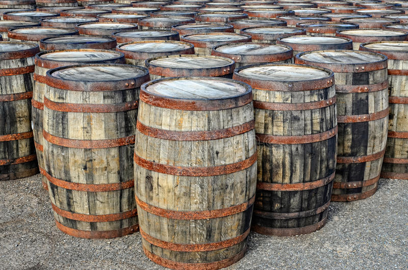 Stacked whisky casks and barrels stock image
