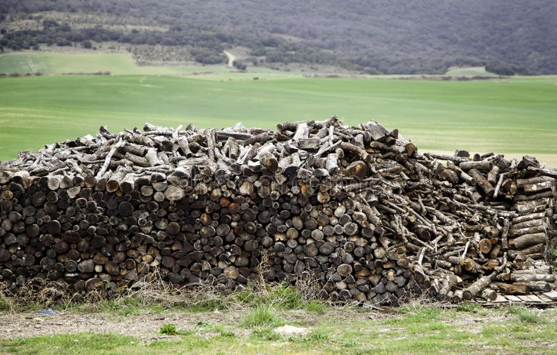 Stacked wood logs royalty free stock images