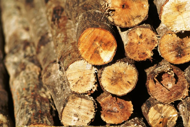 Stacked wood pile ends royalty free stock photos